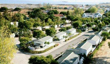 pinheiros de marim- olhão camping park – via portugal